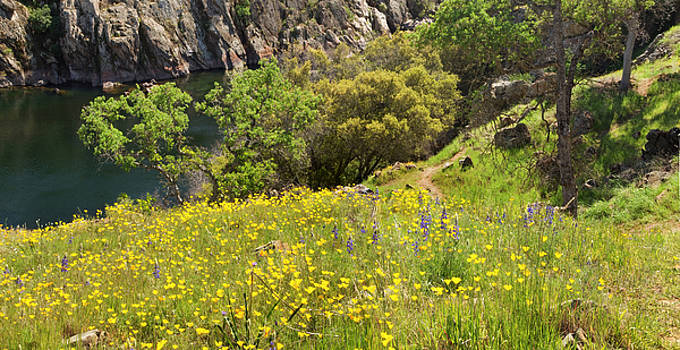Spring on the Stanislaus River by Matt Tilghman