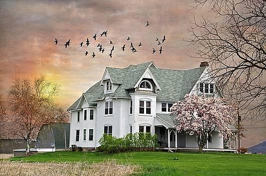 Spring Pinks by Stephanie Calhoun