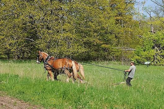 Spring Plowing by G Teysen