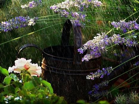 Spring Rain by Marika Evanson