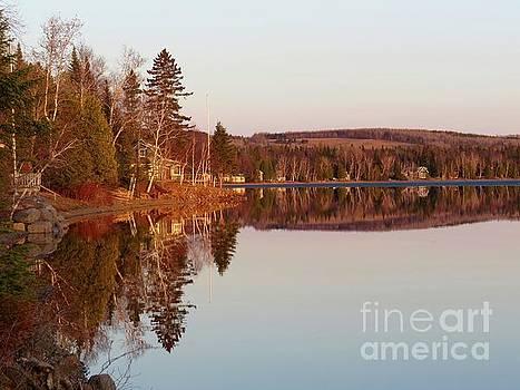 Spring reflection by Brenda Ketch