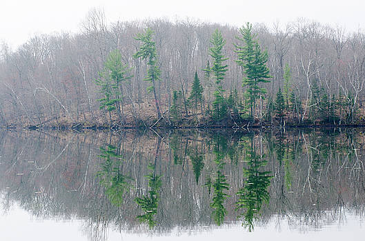 Spring Reflections by Paul Geilfuss
