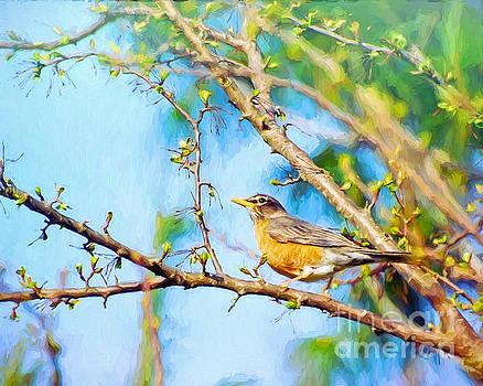 Spring Robin  by Kerri Farley