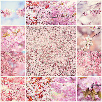 Jenny Rainbow - Spring Sakura Bloom. Mosaic Collage
