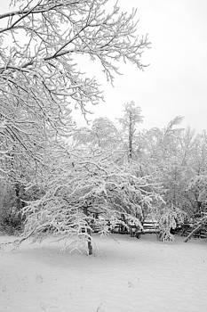 Valerie Kirkwood - Spring Snow 1