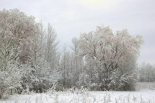 Valerie Kirkwood - Spring Snow 3