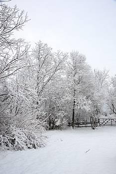 Valerie Kirkwood - Spring Snow 4