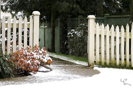 Spring Snowfall by Lorna Rande