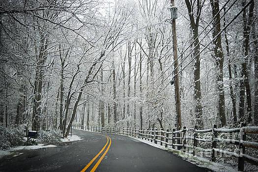 Rima Biswas - Spring snowfall