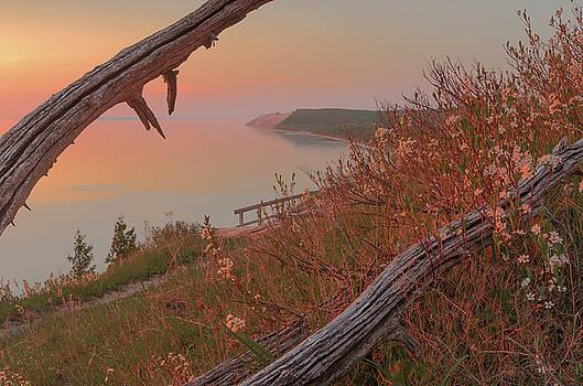 Spring Splendor by Thomas Pettengill