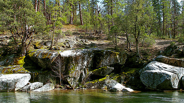 Spring Stanislaus by Larry Darnell