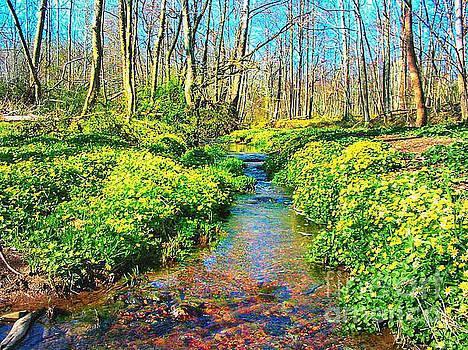 Spring Stream Stockton New Jersey  by John Castell