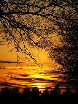 Spring Sunset by Joyce Kimble Smith
