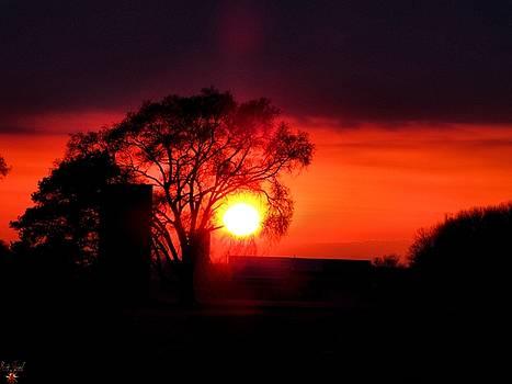 Scott Hovind - Spring Sunset