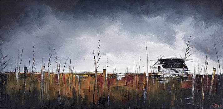 Spring Thaw by Carolyn Doe