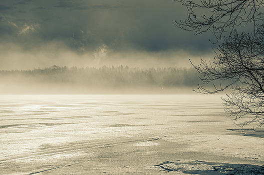 Spring Thaw Maine by Lisa Purcell