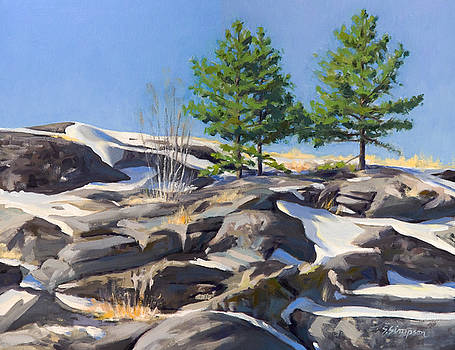 Spring Thaw on Black Ridge by Steven A Simpson