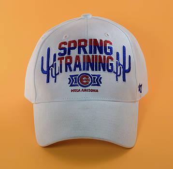 Spring Training in Mesa Cap by Greg Thiemeyer