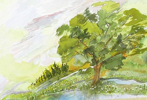 Spring tree by Barbara Pearston