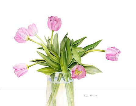 Spring tulips by Fran Henig