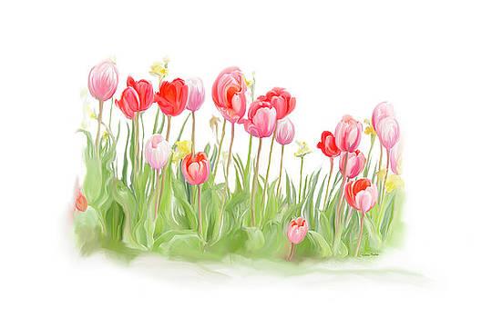 Spring Tulips II by Ramona Murdock