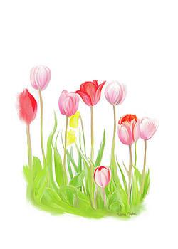 Spring Tulips IV by Ramona Murdock
