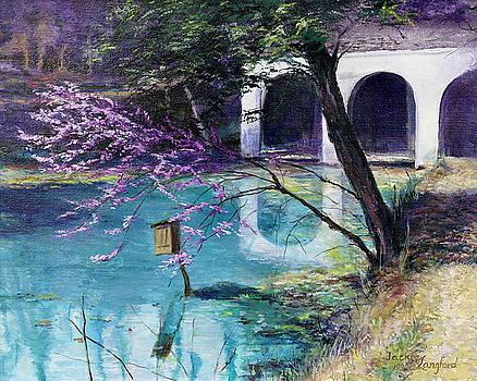 Spring Walk by Jackie Langford