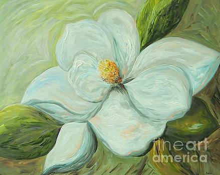 Spring's First Magnolia Blossom 1 by Eloise Schneider