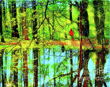 Springs reflection by Gina Signore