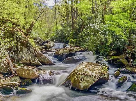 Springtime Cascades on Yellow Creek by Kelly Kennon