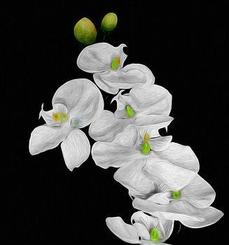 Springtime by Cecil Fuselier