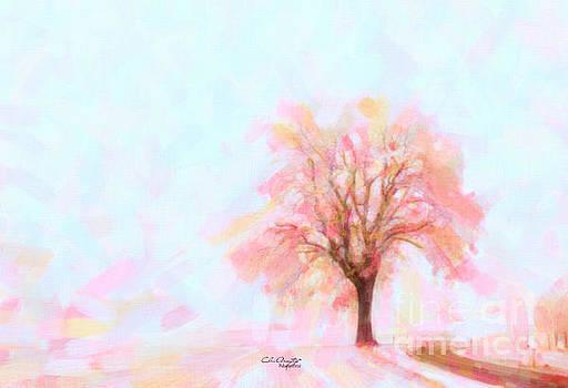 Springtime by Chris Armytage