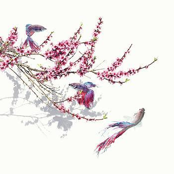 Springtime by Floriana Barbu