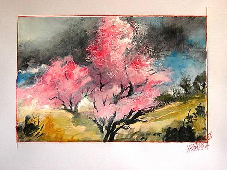 Springtime in south germany by HGW Schmidt