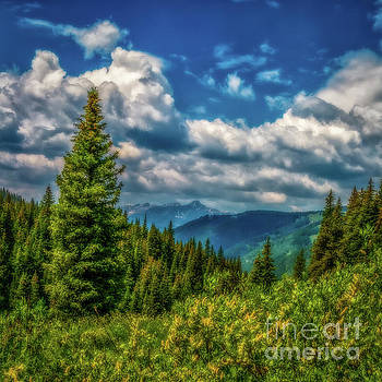 Jon Burch Photography - Springtime in the Rockies