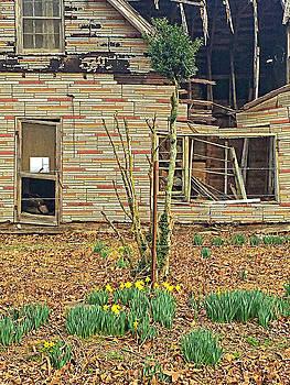 Springtime by Susan Leggett