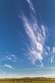 Sprinkled cloud by Hitendra SINKAR