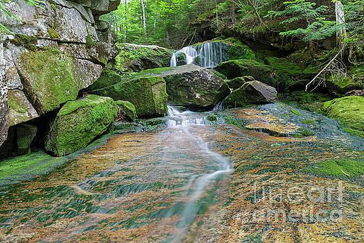 Spur Brook - Randolph New Hampshire by Erin Paul Donovan
