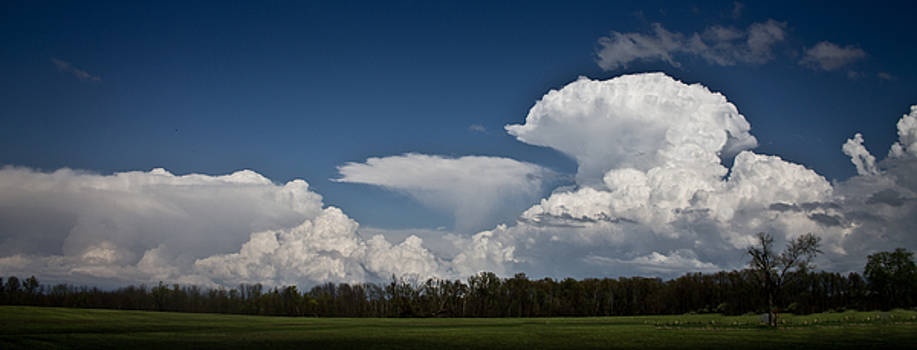 Tornado Alley by Mary Nash-Pyott