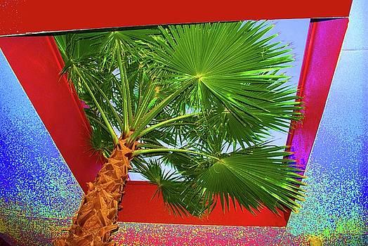 Jost Houk - Square Palm