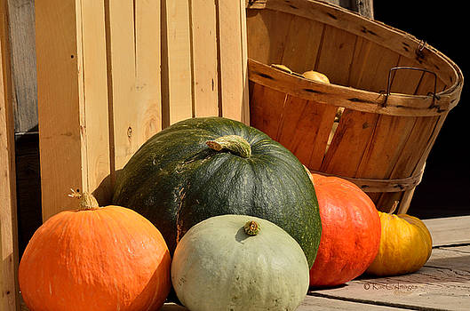 Squash in Different Colors by Kae Cheatham