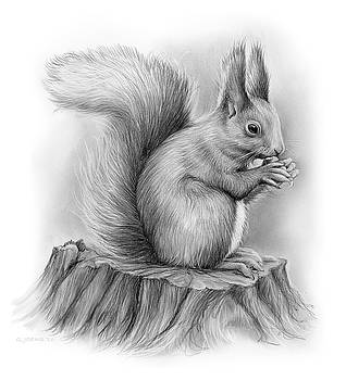 Greg Joens - Squirrel