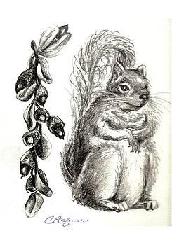 Squirrel Happy by Carol Allen Anfinsen
