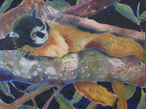 Squirrel Monkey Revised by Libby  Cagle
