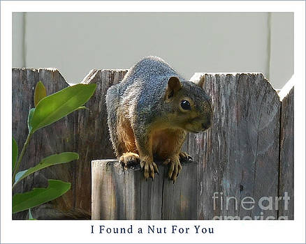 Felipe Adan Lerma - Squirrel on Post Poster