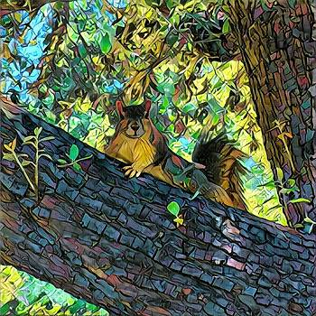 Squirrel in a Tree by Richard Hinds