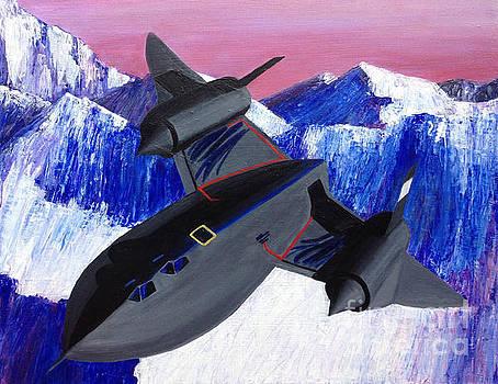 SR71 Blackbird Jet by Ashley Baldwin