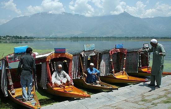 Srinagar by Mohammed Nasir