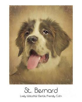 St. Bernard Poster by Tim Wemple