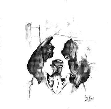 St. Bernard  Puppy 2 by Crystal Webb